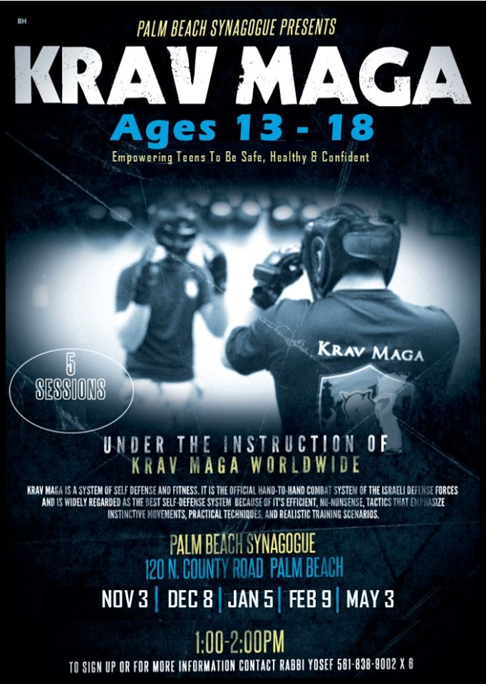 Krav Maga at Palm Beach Synagogue