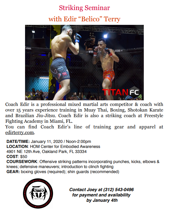"Striking Seminar with Edir ""Belico"" Terry"