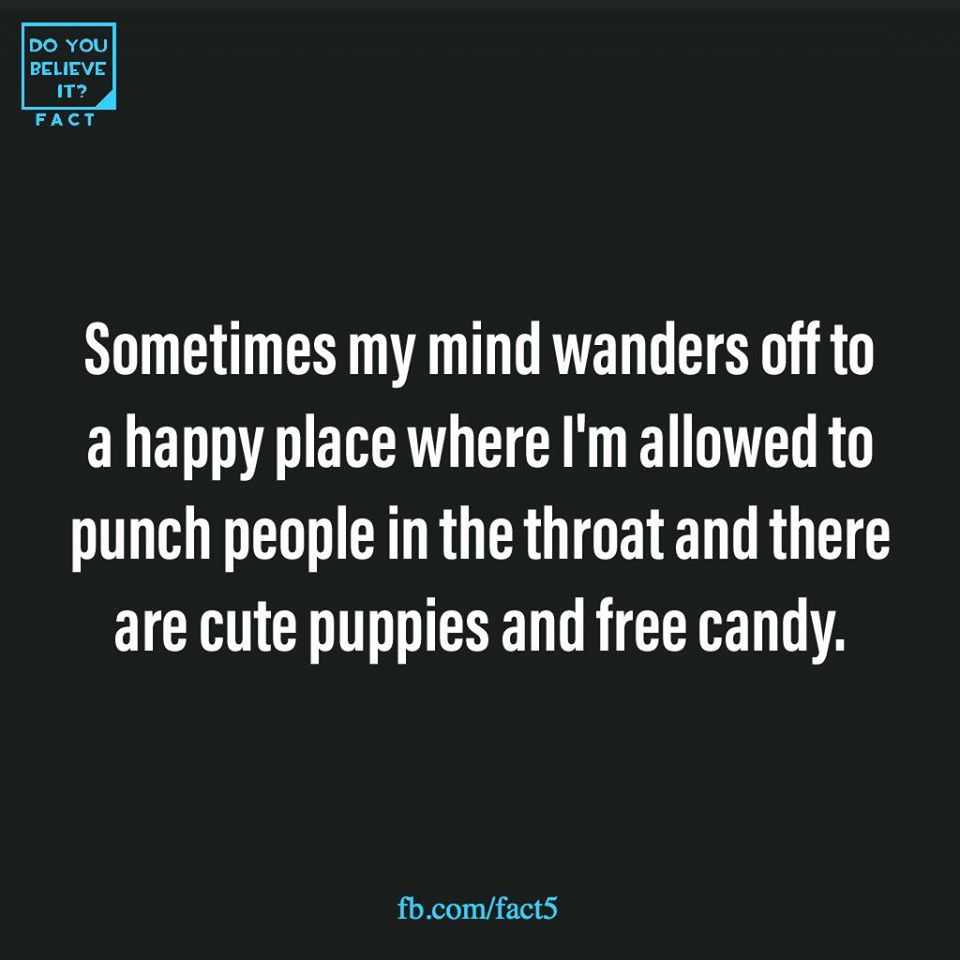 Sometimes my mind wanders off to a happy place where I'm allowed to punch people in the throat and there are cute puppies and free candy.